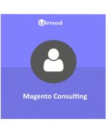 Magento 2 Consulting