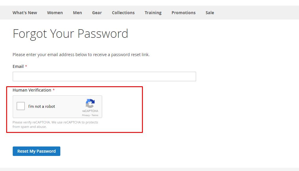 reCAPTCHA v2 in customer forgot password form